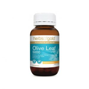 Olive Leaf 5000 - Immune Health - Cardiovascular Health by Herbs of Gold